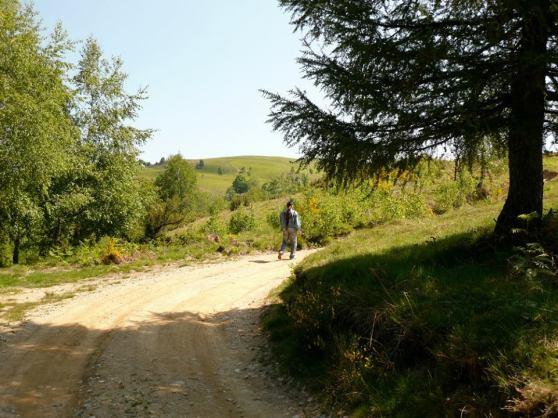 Michel Montecrossa & Mirapuri Nature 2
